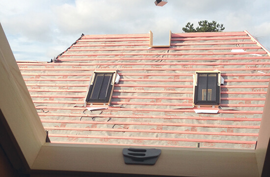Roof windows Dakea Vintage for manor drive
